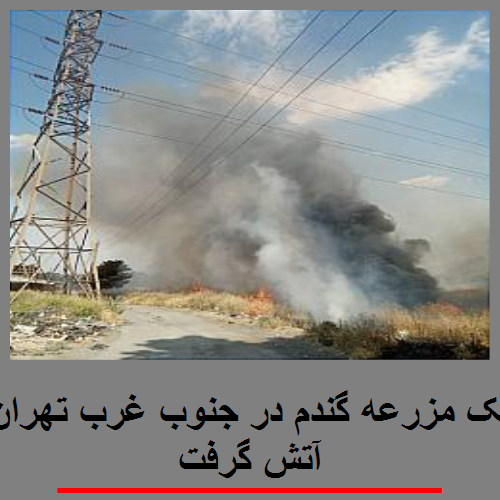یک مزرعه گندم در جنوب غرب تهران آتش گرفت